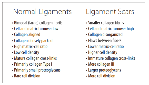 Ligament Injury, Healing, Treatment, And Imaging